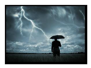 tree-lightning-protection-richmond